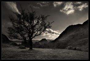 Borrowdale Fell by MattAnth
