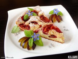 Plum Cake by PaSt1978