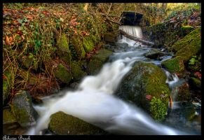 Ashover Brook by Megglles