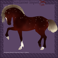Nordanner Import 799 by xoSapphy