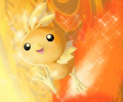 Torchic no 255 by gothYvonne