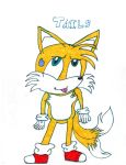 Tails by PitBull-Lover