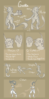 .:OS: GaoRa Species Guide| General Biology:. by Goddess-of-BUTTSECKS