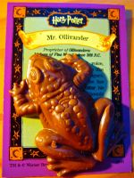 Chocolate Frog by dreamingoflight