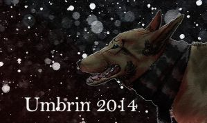 Winter Project by umbrin