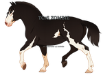 1152 TCrS Zombie by noebelle