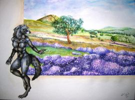 Fields of Lavender by forensicfox