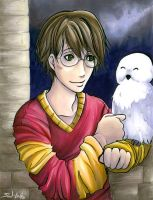 Harry potter by sw