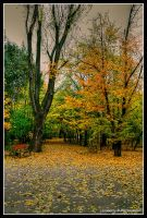 autumn peak by Iulian-dA-gallery
