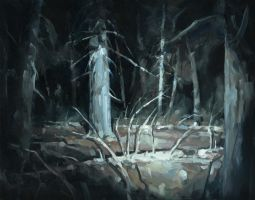 The secret of the Black forest by merl1ncz