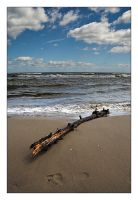 Stranded Goods II by cody29