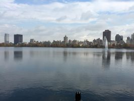Central Park by OGspikelee