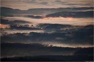 Bavarian Forest by Aphantopus