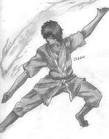 Zuko from Avatar the last airbender by Xezn
