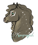 #634 Silver's Kanqraqiesh by SilverOakStables