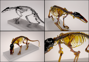 Dino skeleton by Tahyon