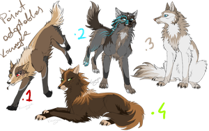 canine adoptables CLOSE by Kocurzyca