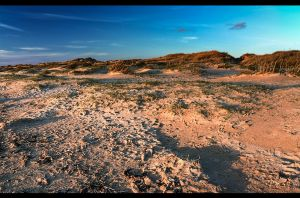 Sandy dunes by sylaan