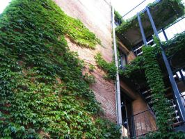 Ivy Building 2 by abuseofstock