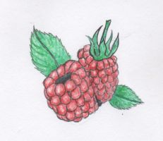 raspberry by celinissime