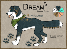 Dream Ref Sheet by Ruaya