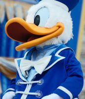 Donald by CaitrinXlXAnneliese