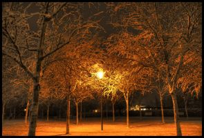Cold Winternight HDR by JoInnovate
