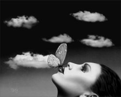 The butterfly effect by willcrane