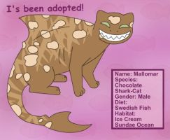 Adopted: Choco-Sharkcat by MuseWhimsy