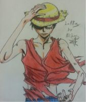 Monkey D. Luffy by PaleSun