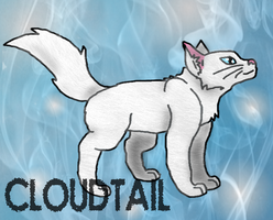 Cloudtail by SuperSonicFireDragon