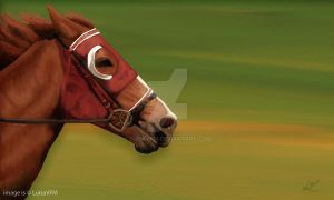 Horse by LuisaVFM