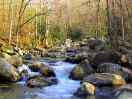 Greenbriar Creek II by RealityIntolerant