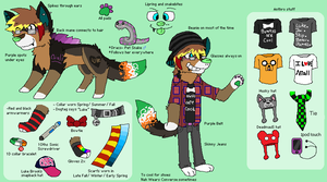 Shadow Refrence sheet 2012-2013 by huskynugget