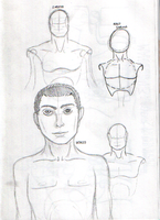 Chest Mini study by TheLamadude