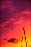 sailors delight by MyTwistedThought