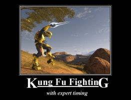 Kung Fu Fighting by lepricaun