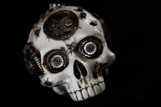 Steampunk Skull by Onyx-Philomel