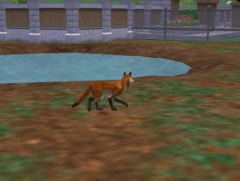 Red Fox by PaintedTreasure