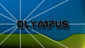 OLYMPUS IMAGING CORP. by Wretched--Stare