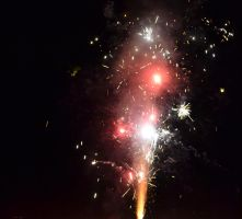 Fourth of July 2013 Fireworks 4 by Singing-Wolf-12