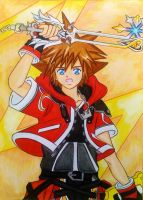 Sora Valor Form by dagga19