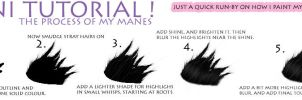 quick mane process by lesliemarie-manips