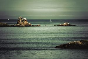 From an island to the other on by ChristineAmat