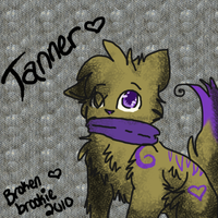 Tanner Reference by Brokenbrookie