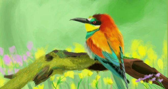 Practice Painting (Color,Brushstrokes) by luaquinART