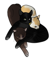 Kitten Pile. by sealkisses