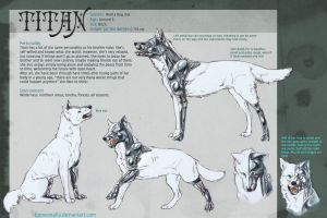 Ref sheet: Titan by Tuonenkalla