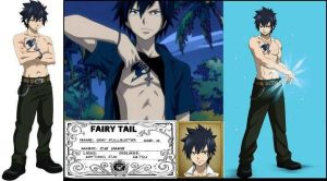 Gray Fullbuster: Magical ID by BlissfullyDisturbed