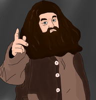 Yer a wizard Harry by DCFangirl01